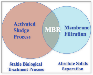 MBR_Technology_01